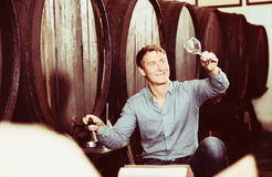 Man tasting wine before purchasing it in winery. Portrait of glad man tasting wine before purchasing it in winery Royalty Free Stock Image