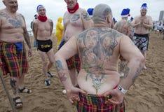 Man with tattoos, Belgium Stock Photos