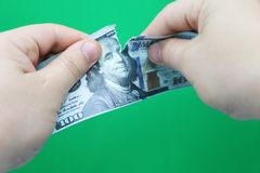 Man tearing dollars on green background stock image