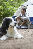 Man By Tent With Blurred Dog In Foreground Royalty Free Stock Photos
