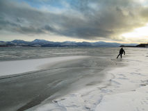 Man tests ice Lake Laberge freeze-up Yukon Canada. Man cautious checking shore ice in winter landscape during freeze-up of Lake Laberge, Yukon Territory, Canada Stock Photography