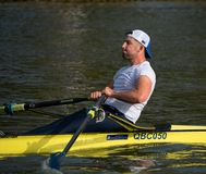 Man on Thames. Reading, United Kingdom - February 17 2019:   A man rows along the River Thames in Reading stock photography