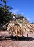 Man thatching a parasol, Tobago. Stock Image