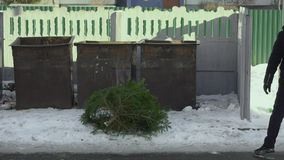 A man throws a Christmas tree into the bin. Winter vacation concept, slow motion stock video footage