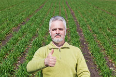 Man with thumb up. Old Man with thumb up on a grass Royalty Free Stock Images