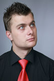Man in a tie Royalty Free Stock Image