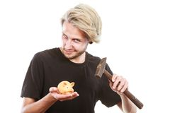 Man about to break piggy bank with hammer. Money, savings, finances concept. Young blonde man wearing black t shirt trying to break piggy bank with hammer Royalty Free Stock Photography