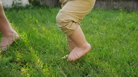 Man and little boy bare feet walk on fresh green grass. Man and toddler son in beige pants bare feet walk on fresh green grass on sunny day close low angle shot stock video