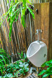 Man Toilet in in nature . Royalty Free Stock Images