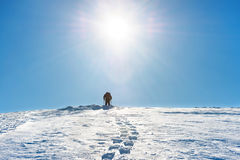 A man on the top of mountain. A man on the top of winter mountain with snow royalty free stock photos
