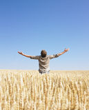 Man top of the world in wheat field Stock Images