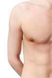 Man torso Stock Image