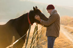 Man touching horse Stock Photos