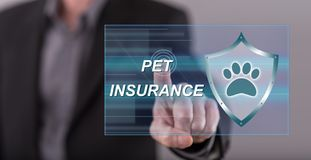 Man touching a pet insurance concept Stock Image