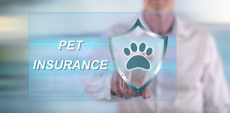 Man touching a pet insurance concept on a touch screen Royalty Free Stock Photos
