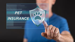 Man touching a pet insurance concept on a touch screen Royalty Free Stock Images