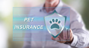 Man touching a pet insurance concept on a touch screen Stock Photos