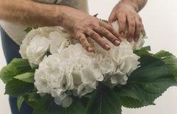 Man touching wild white roses Royalty Free Stock Photo