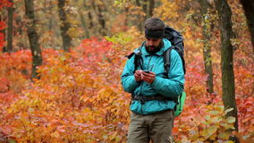 Man tourist in a blue jacket with a backpack uses smartphone in the forest stock video
