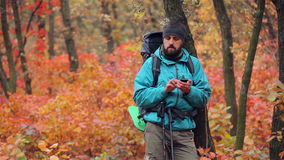 Man tourist in a blue jacket with a backpack uses smartphone in the forest stock footage