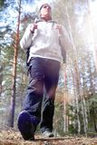 A man is a tourist in a pine forest with a backpack. A hiking tr. Ip through the forest. Pine reserve for tourist walks. A young man in a hike in the spring.r Stock Photography