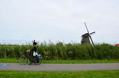 Man in traditional clothes rides on bike along the windmills of the UNESCO World Heritage Kinderdijk, Netherlands royalty free stock photography