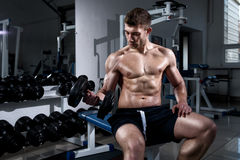 Man is training biceps with dumbbells in the gym close-up. Young man is training biceps while sitting with dumbbells in the gym close-up Stock Photo