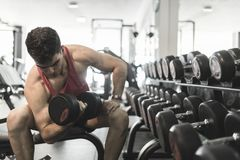 Man training biceps muscle in gym near to dumbbells Stock Photography