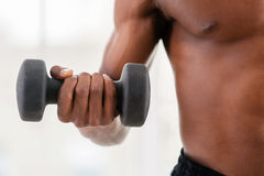 Man training with dumbbells. Stock Photos