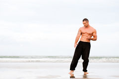 Man training karate Stock Images