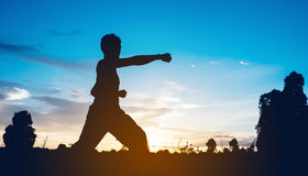 Man training karate Royalty Free Stock Photo