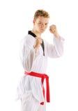 Man training taekwondo Stock Image