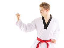 Man training taekwondo Royalty Free Stock Image