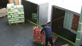 Man of transport company load boxes with apples in truck. Russia, Novosibirsk - July 25, 2015: Worker of transport company load boxes of goods in trailer of stock video