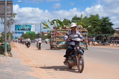 Man transports coconuts on a motobike Stock Images