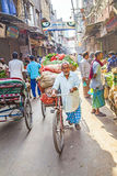 A man transports vegetables with a cycle rickshaw in Delhi, India Stock Images