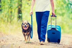 A man with a travel bag walking a dog along a rural road. A man walks with a dog on a leash along a country road. A man carrying a travel bag royalty free stock image