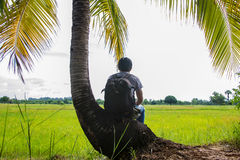 Man traveler with backpack and looking at wide fields are golden Royalty Free Stock Image