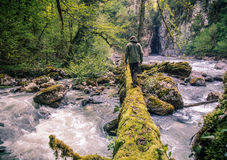 Man Traveler crossing river on log outdoor Stock Images