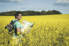 Man traveler with map in hand looking at it against the background of sunlit meadows. Royalty Free Stock Image