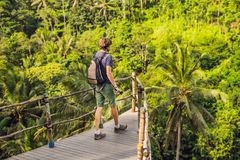 Man traveler on view point in the background of a jungle, Bali, Indonesia.  stock photos