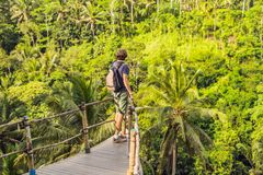 Man traveler on view point in the background of a jungle, Bali, Indonesia.  royalty free stock photo