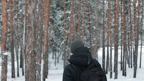 Man travels through the woods. Man with a backpack walking through forest stock video footage