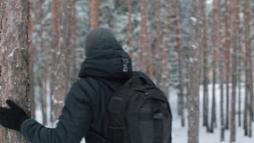 Man travels through the woods. Man with a backpack walking through forest stock video