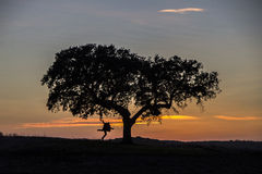 Man and tree silhouette Royalty Free Stock Photography