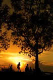 Man and tree silhouette. At viewpoint in sunset Stock Photos