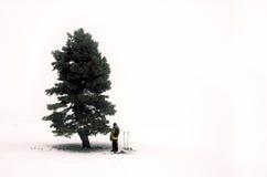 Man and tree Stock Photo