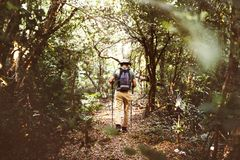 Man trekking in a forest Stock Photo