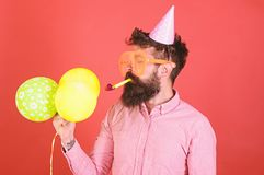 Man with trimmed beard wearing pink shirt and party cap isolated on red background. Bearded man blowing party whistle. And holding bright balloons. Hipster with stock photos