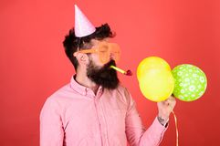 Man with trimmed beard wearing pink shirt and party cap  on red background. Bearded man blowing party whistle. And holding bright balloons. Hipster with long Stock Photo